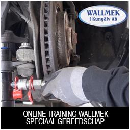 Wallmek online training